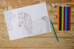 The horse drawn with a pencil Royalty Free Stock Photos
