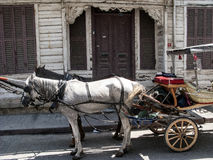 The Horse drawn Phaetons, Princes Island of Buyukada, Turkey Stock Photo