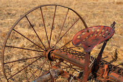 Horse Drawn Rake Stock Images