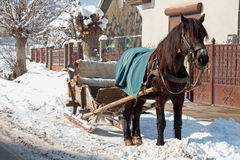 A horse-drawn sleigh Stock Images