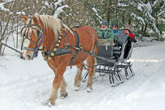 Horse drawn sleigh. And Belgian Draft Horses pulling sled of people, Adams Farm, Wilmington, Vermont Royalty Free Stock Photos