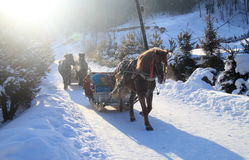 Horse drawn sleigh. Is one of the most popular and efficient way for transportation in  north part of China, especially in winter Stock Photography