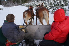 Horse-drawn sleigh by Peter J. Restivo Stock Image