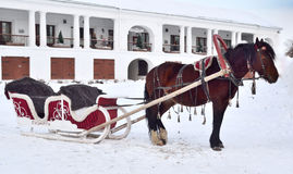 Horse-drawn sleigh in Royalty Free Stock Image