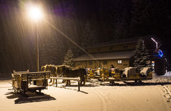 Horse Drawn Sleigh Waits Royalty Free Stock Photos