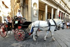 Horse drawn taxi in Florence, Italy Royalty Free Stock Photography