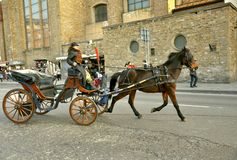 Horse drawn taxi in Florence, Italy Royalty Free Stock Image