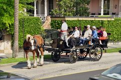 Horse drawn tourist wagon, Charleston Royalty Free Stock Image