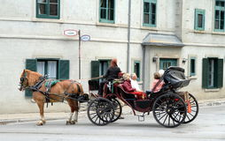 Horse-drawn vagn Arkivbild