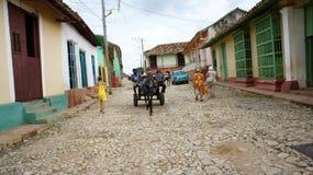 Horse-drawn vagn i Trinidad Arkivfoto
