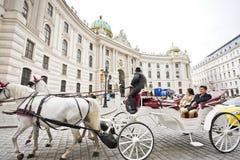 Horse-drawn vagn i Wien royaltyfria bilder