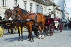 Horse-drawn vagn i Wien Fotografering för Bildbyråer
