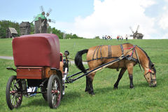 Horse-drawn vehicle. With horse in front Royalty Free Stock Photo