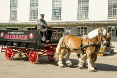 Horse-drawn vehicle Royalty Free Stock Images