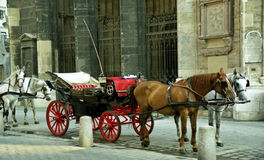 Horse-drawn vehicle. A fiacre in Vienna Stock Photos