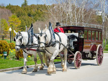 Horse-drawn vintage carriage transports guests to the Grand Hotel. MACKINAC ISLAND, MICHIGAN MAY 19, 2014 Horse drawn carriages are the only form of Royalty Free Stock Photo