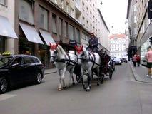 Horse-drawn Wagen Stockbild