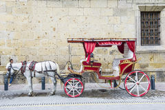 Horse drawn wagon in Guadalajara Royalty Free Stock Image
