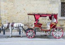 Horse drawn wagon in Guadalajara Stock Image