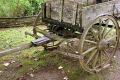 A horse-drawn wagon used in pioneer days Stock Image