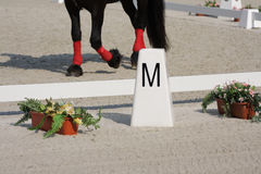 Horse Dressage Rings Royalty Free Stock Photos