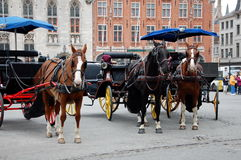 Horse-driven cabs in Bruges Stock Image