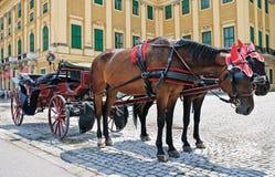 Horse-driven carriage stock photos