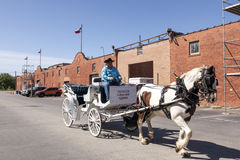 Horse driven carriage in Fort Worth, USA Stock Photography
