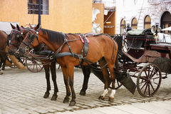 Horse-driven carriage at Hofburg palace, Vienna, Austria Stock Photo