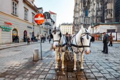 Horse-driven carriage at Hofburg palace in Vienna, Austria. VIENNA, AUSTRIA - October 13, 2016: Horse-driven carriage at Hofburg palace in Vienna, Austria Stock Photo