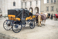 Horse driven carriage Stock Image