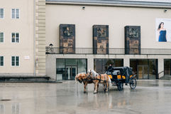 Horse driven carriage Royalty Free Stock Photos