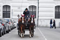 Horse-driven carriage in Vienna Stock Images