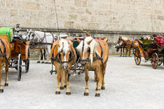 Horse-driven carriages in Salzburg Royalty Free Stock Photos