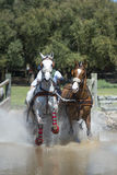Horse Driving (doubles) Stock Photo