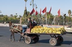 Horse drown carriage in Marrakesh Stock Photos