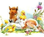 Horse and and ducklings. background with flower. illustration