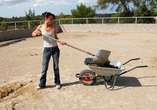 Horse dung and woman stock images