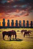 Horse on Easter Island Stock Images