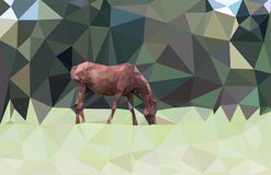Horse eating grass low poly Stock Photo