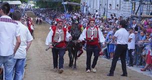 Horse Edek in Sinj stock video