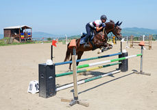 Horse effort Royalty Free Stock Photo