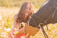 horse&en x27; s-hingst Härlig flicka med arkivfoto