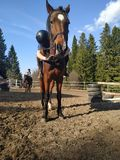 Horse equestrian love and me stock images