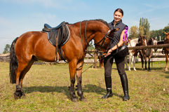 Horse and Equestrienne. Pretty girl and bay horse during the sunny day Stock Images