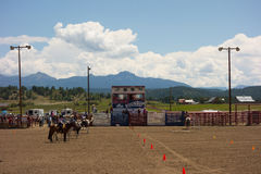 A horse event for children at pagosa springs Royalty Free Stock Images