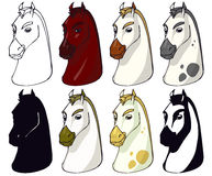 Horse faces Royalty Free Stock Photography