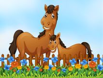 Horse family at flower garden royalty free stock photography
