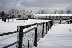Horse farm Stock Image