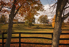 Horse Farm in Autumn Stock Photos